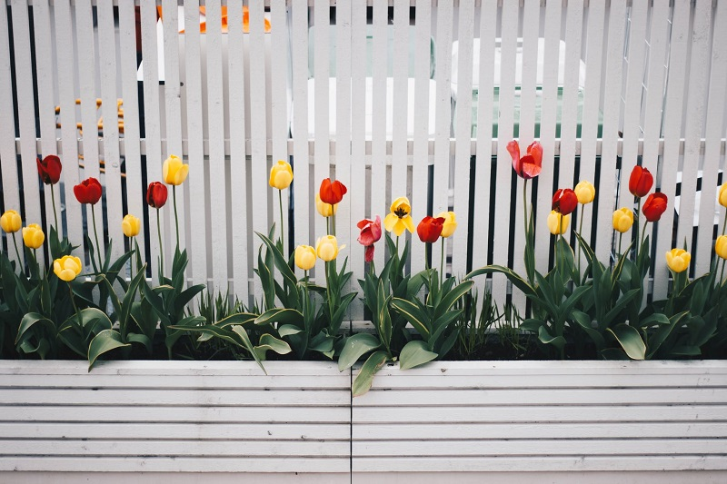 fence-planter-flowers